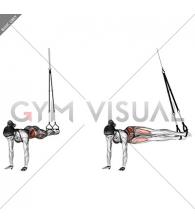 Suspension Pendulum