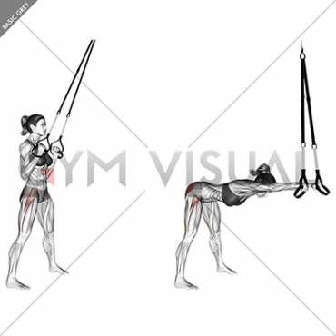 Suspension Hip Hinge
