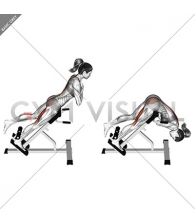 45 degree one leg hyperextension (arms in front of chest)