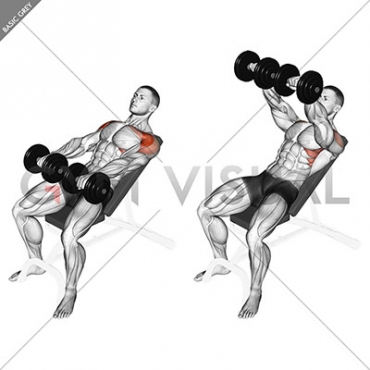 Dumbbell Incline Front Raise