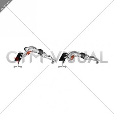 Triceps Press (Head Below Bench)