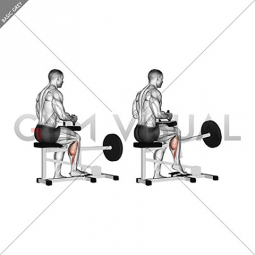Lever seated one leg calf raise