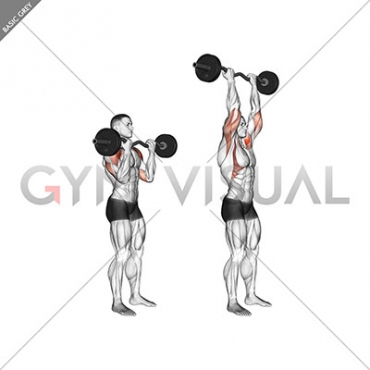 EZ-Bar Standing Overhead Press
