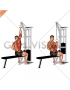 Cable one arm lat pulldown