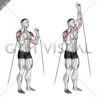 Cable Alternate Shoulder Press