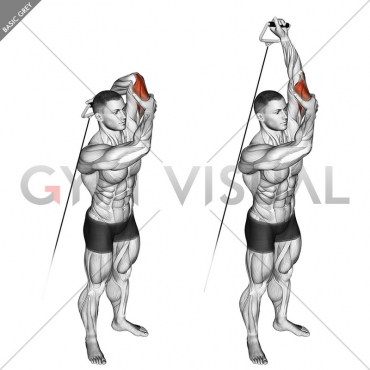 Cable Alternate Triceps Extension