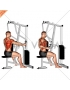 Lever One Arm Seated Row (Seated row machine)