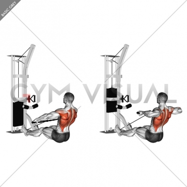 Cable Floor Seated Wide-grip Row