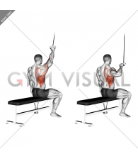 Alternate Lateral Pulldown