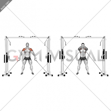 Cable Front Shoulder Raise