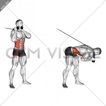 Cable Judo Flip