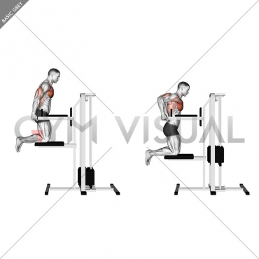 Assisted Chest Dip (kneeling)