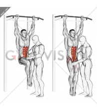 Assisted Hanging Knee Raise With Throw Down