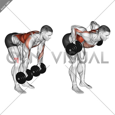 Dumbbell Palm Rotational Bent Over Row