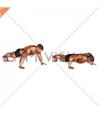 Wide Hand Push up
