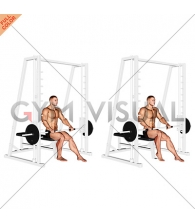 Smith Seated One Leg Calf Raise