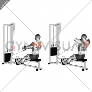 Cable Rear Delt Row (stirrups)