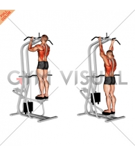 Assisted Standing Chin-Up