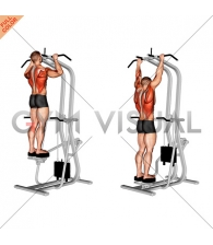 Assisted Standing Pull-up