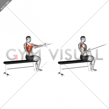 Cable Seated One Arm Alternate Row