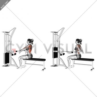 Cable Seated Supine-grip Row