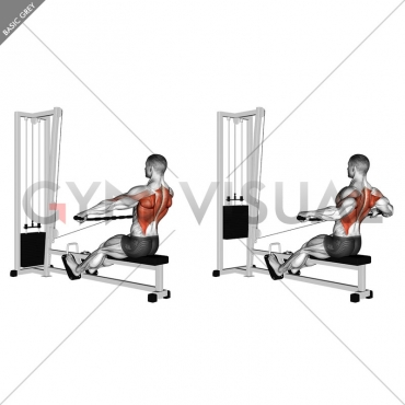 Cable Seated Wide-grip Row