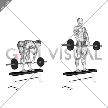 dumbbell stiff leg deadlift video guide