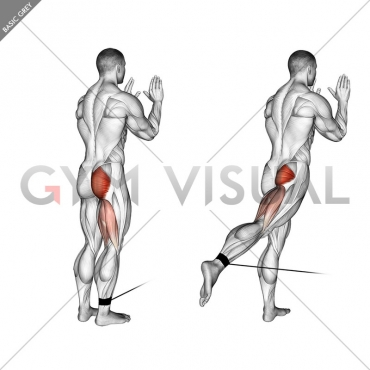 Cable Standing Hip Extension