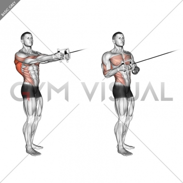 Cable Standing Twist Row (V-bar)
