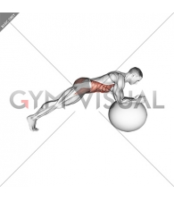 Stability Ball Front Plank