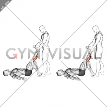 Assisted Lying Gastrocnemius Stretch