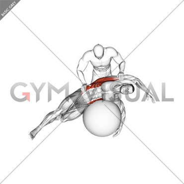Assisted Oblique And Latissimus Dorsi Stretch On Stability Ball