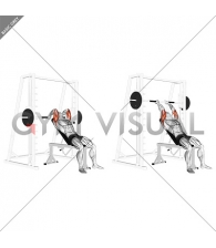 Smith Machine Incline Tricep Extension