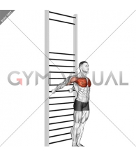Standing Chest Stretch (with Training Wall Bars)