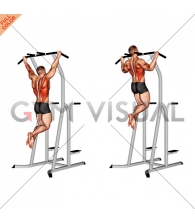 Wide Grip Pull-Up on Dip Cage