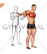 Assisted Standing Chest Stretch