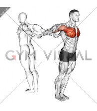 Assisted Pulling Backs Chest Stretch