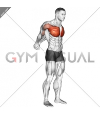 Straight Arms Backward Chest Stretch