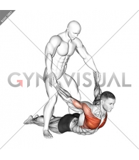 Assisted Pulling Arms in Prone Position Chest Stretch