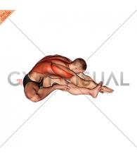 Sitting Side Reach Stretch