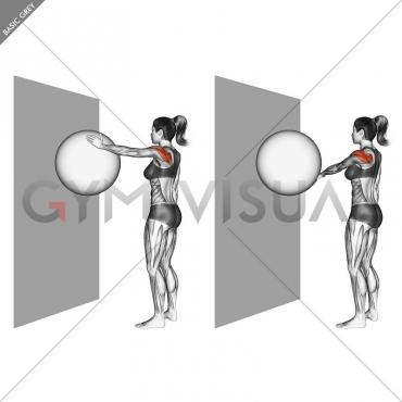 Circles Ball (wall)