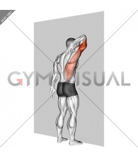 Triceps Stretch Against Wall