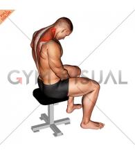 Sitting Neck Flexion Stretch