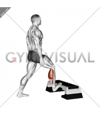 Standing Toe Up Achilles Stretch