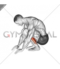 Squatting Achilles Stretch
