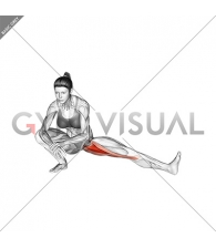 Abduction Of One Leg Flexion Stretch