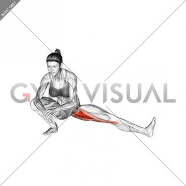 Abduction Of One Leg Flexion Stretch