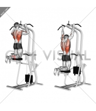 Assisted Pull-up