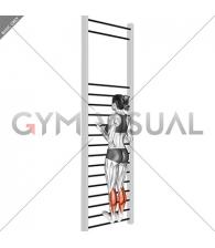 Tibial Flexion Stretch On Wall Bar