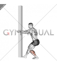 Tibial Stretch With Semi Flexed Knee